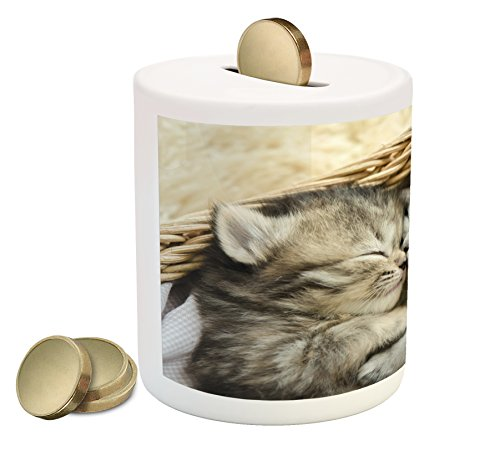 Cute Coin Box Bank by Lunarable, Tabby Kittens Sleeping and Hugging in a Basket Adorable Newborn Animals, Printed Ceramic Coin Bank Money Box for Cash Saving, Black Pale Brown White