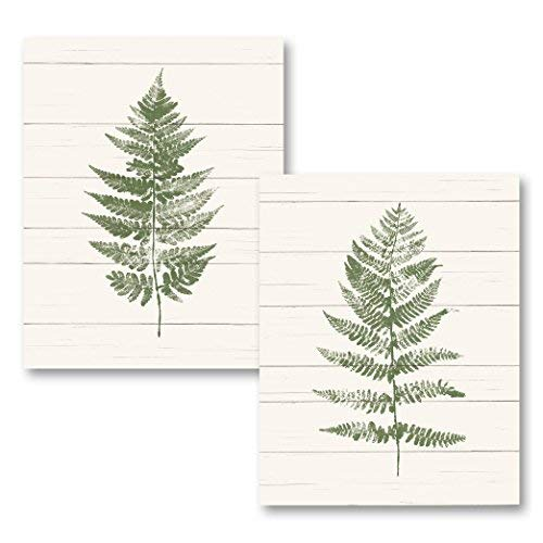 King65irginia Shabby Chic Fern Print I & II (Printed on Canvas), Two 8x10 inches Unframed Canvas Art Printed