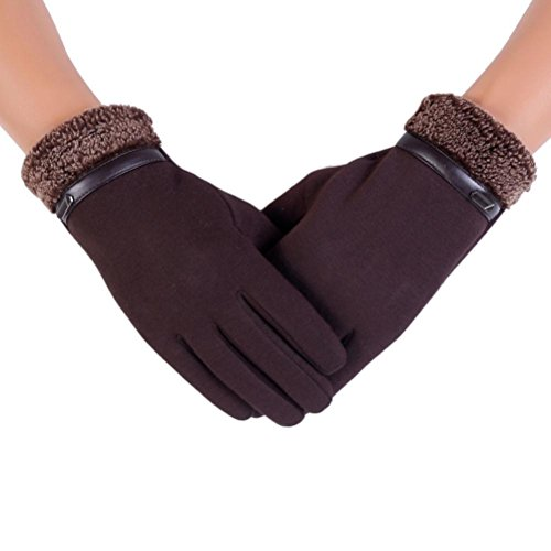 Pulison(TM)Men Women Winter Driving Riding Waterproof Windproof Full Finger Motorcycle Climbing Ski Outdoor Sports Mitten Heated Screentouch Cotton Soft Warm Snowboard Anti-slip Gloves (Brown, 24cm)