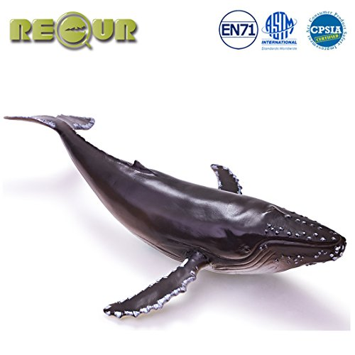 Humpback Whale - RECUR Toys 12