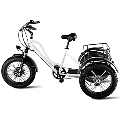 "zwan 500 W Electric Adults Tricycle with 20"" Fat Tire and Lithium Battery with Ebook"