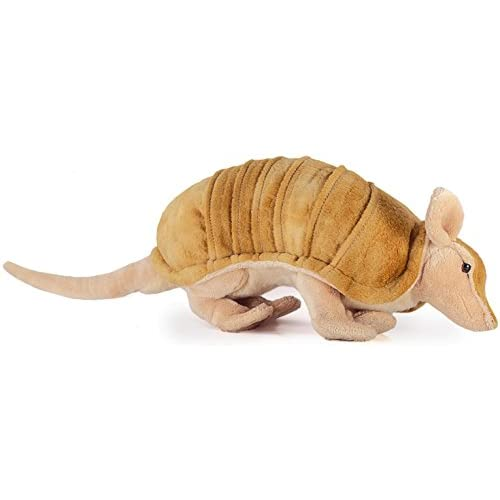 Delicate Mike The Armadillo 10 Inch Tail Measurement Not Included