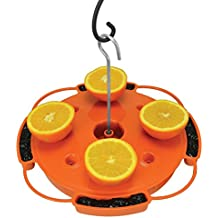Songbird Essentials SE905 Ultimate Oriole Feeder (Set of 1)