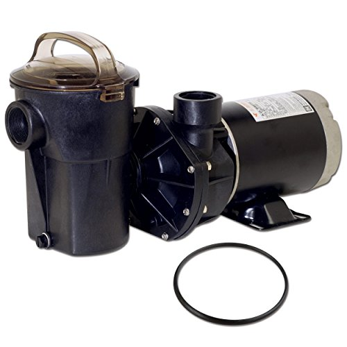 Hayward SP1580X15 Power-Flo LX Series 1-1/2-Horsepower Above-Ground Pool Pump with Cord and Replacement Lid O-Ring - 2 Item Bundle Hayward Series