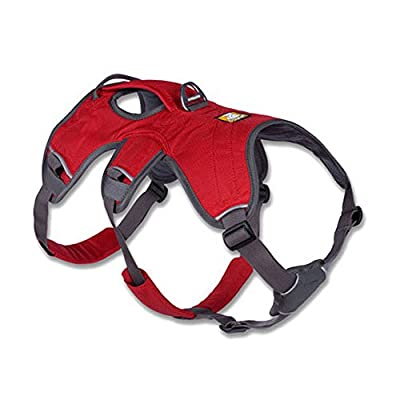 Web Master Secure, Reflective, Multi-Use Harness for Dogs by Ruffwear