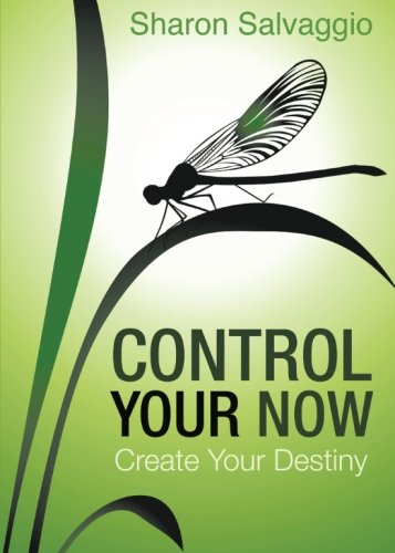Download Control Your Now pdf