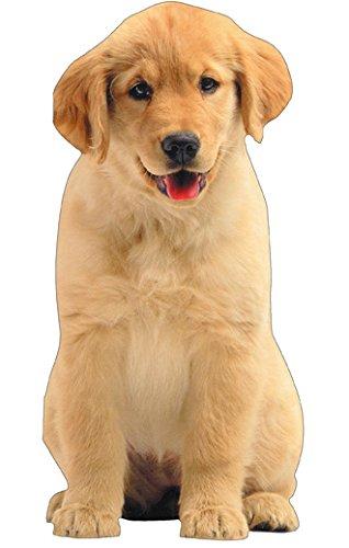 Golden Retriever Puppy Die Cut Gift Card Holder