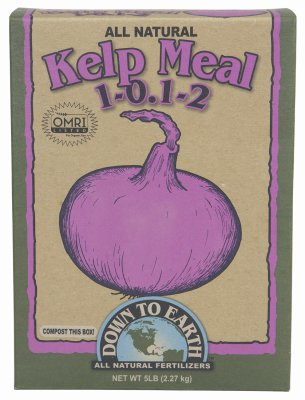Down To Earth Kelp Meal 5lb