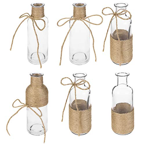 MyGift Assorted Decorative Glass Flower Vases with Rustic Rope Design, Set of 6 (Rustic Vases)