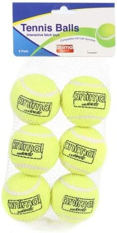 Animal instinto pelotas de tenis Pack de 6: Amazon.es: Productos ...