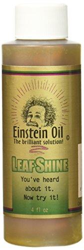 planet-natural-einstein-oil-leaf-polish-4-ounce