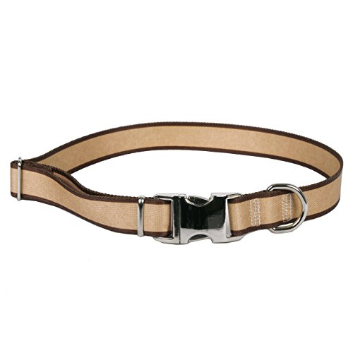 Yellow Dog Design Sterling Stripe Tan w/Brown Collar, Extra Small 8