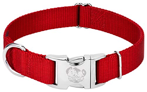 Country Brook Petz – Premium Nylon Dog Collar with Metal Buckle – Vibrant 22 Color Selection (Large, 1 Inch Wide)