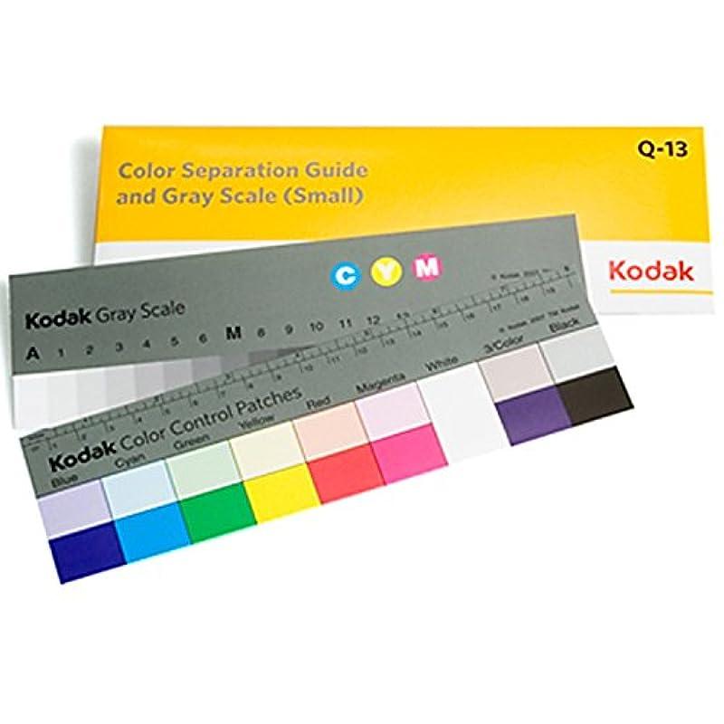 Kodak 컬러 분리 가이드 그레이 스케일 Q-13 8 인치