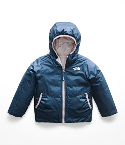 The North Face Kids Baby Girl's Reversible Perrito Jacket (Toddler) Blue Wing Teal 6T