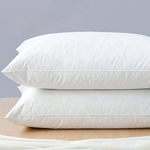 White Goose Feather and Down Pillow, Standard, Set of 2