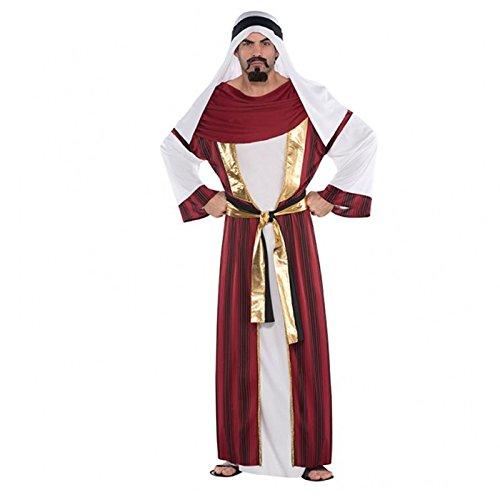 amscan Standard Adult Sahara Prince Costume, Multicolor ()