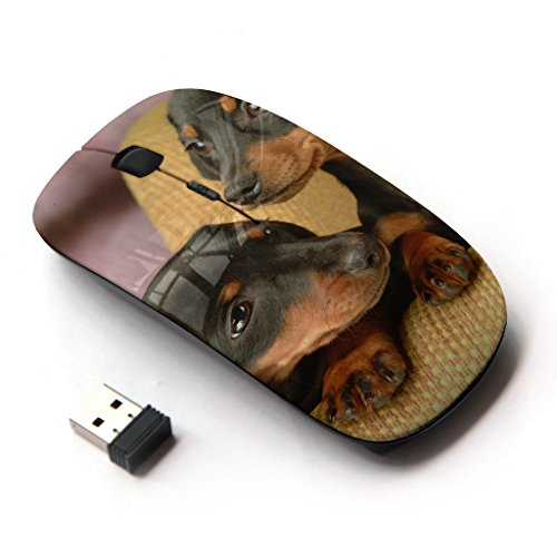 KOOLmouse [ Optical 2.4G Wireless Mouse ] [ Dachshund Miniature Puppies Dog Shorthair ]