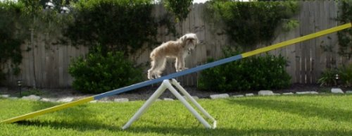Adjustable Teeter Base SeeSaw Base - Dog Agility Equipment- BOARD NOT INCLUDED! by Weave Poles