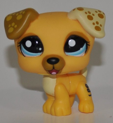 Jack Russell #1496 (Gold) - Littlest Pet Shop (Retired) Collector Toy - LPS Collectible Replacement Single Figure - Loose (OOP Out of Package & -