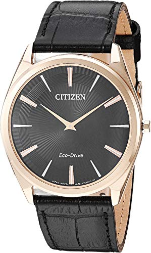 - Citizen Watches Men's AR3073-06E Eco-Drive Black One Size