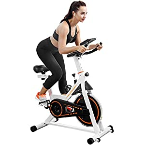 Well-Being-Matters 41Bmjc6rSDL._SS300_ UREVO Indoor Cycling Bike Stationary,Exercise Bike Workout Bike,Fitness Bikes for Home Cardio Workout Bike Training Bike