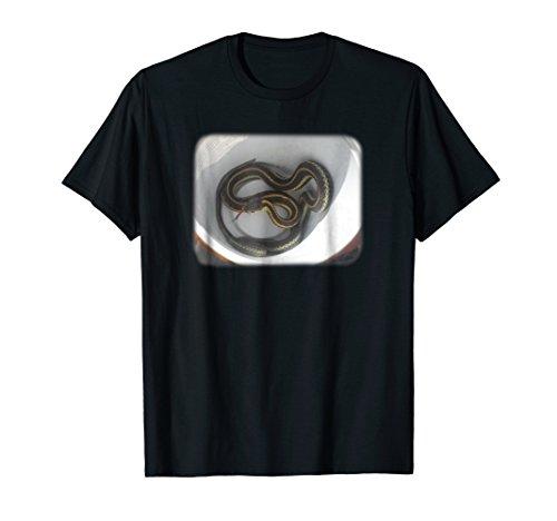 Garter Snake For William