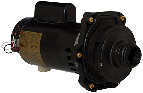 (Hayward SPX3220X25Z2PE 2-1/2-Horsepower 2 Speed Standard Efficient Max Rate Power End Replacement for Hayward Tristar SP3200X Series Pump)