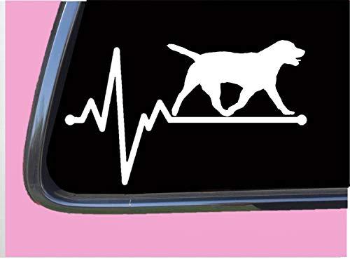 Labrador Retriever Lifeline TP 203 vinyl 8