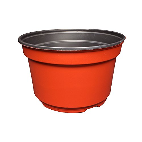 8 Inch Round Plastic Flower Pots Mum Pans (Terracotta Color) Durable, Reusable, Recyclable, Made in the USA (25 Pots) Review