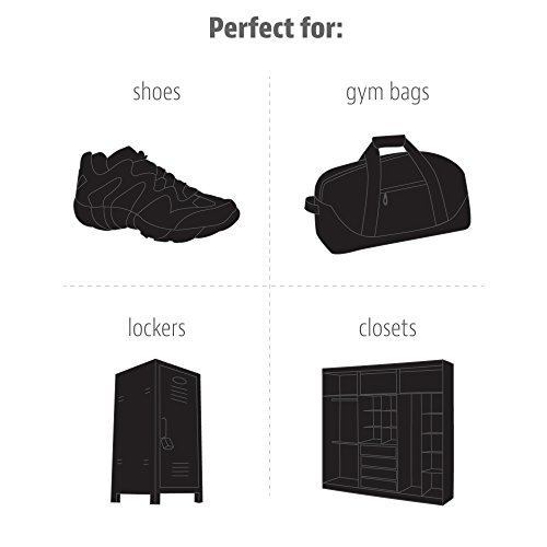 Sof-Sole-Sneaker-Balls-Shoe-Gym-Bag-and-Locker-Deodorizer-Sports-3-Pairs