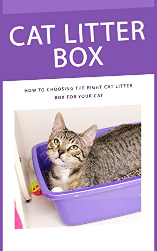 cat-litter-box-how-to-choosing-the-right-cat-litter-box-for-your-cat