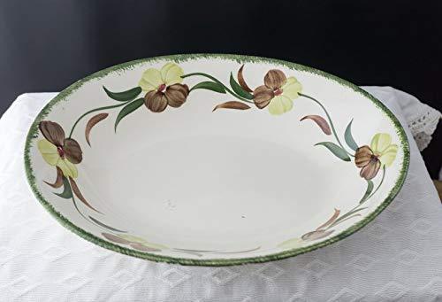 (Blue Ridge Southern Potteries Handpainted Underglaze Flower Fantasy Pattern 9 1/4