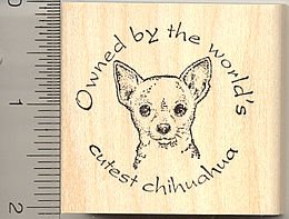Owned By The World's Cutest Chihuahua Rubber Stamp
