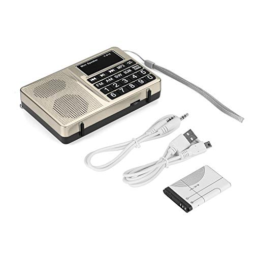 Bewinner Portable FM/AM/SW Stations Stereo Radio,Noise Can