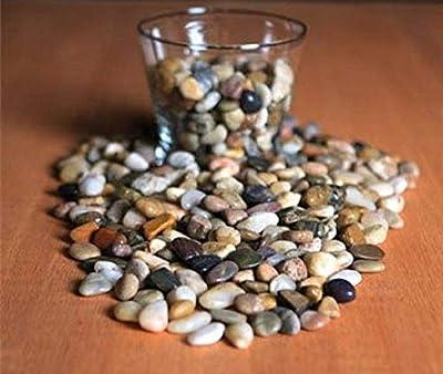Greenbrier Bag of Decorative River Pebbles/Accent Stones, 32 oz
