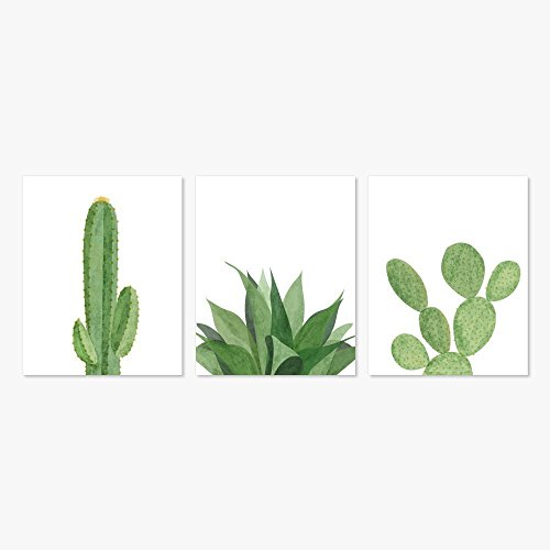 Modern Succulents & Cactus Home Decor Art Prints (Set of 3, 5x7) by Color And Flair