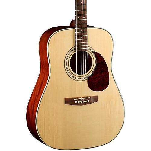 Earth Series Earth70 Dreadnought Acoustic Guitar
