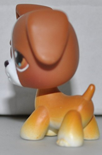 Littlest Pet Shop Boxer (Boxer #25 (Brown, White Accent, Brown Eyes) Littlest Pet Shop (Retired) Collector Toy - LPS Collectible Replacement Single Figure - Loose (Oop Out of Package &)