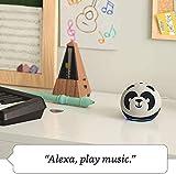 All-new Echo Dot (4th Gen) Kids Edition + Echo Glow