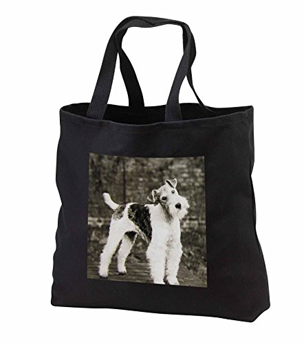 Scenes from the Past Magic Lantern - Vintage Wire Hair Fox Terrier Dog Circa 1900 Edwardian Era - Tote Bags - Black Tote Bag 14w x 14h x 3d (tb_246098_1)