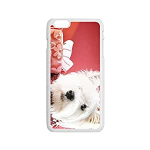 Christmas Time Hight Quality Plastic Case for Iphone 6