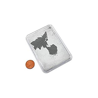 Iron Filings in Plastic Case: Toys & Games