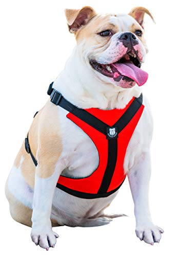 Bulldog Grade No Pull Dog Harness - Reflective Vest Harnesses with Handle Designed for French Bulldogs and English Bulldogs (Best Harness For English Bulldog)