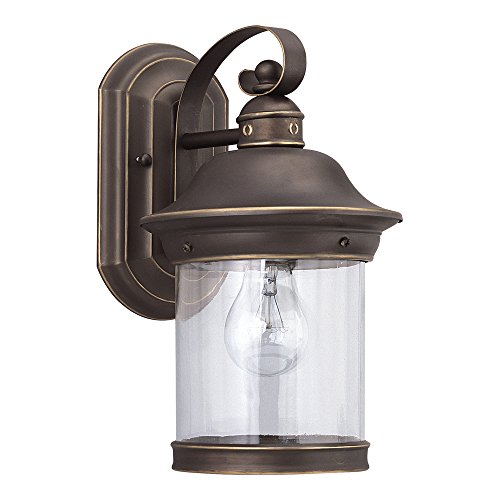 (Sea Gull Lighting 88081-71 Hermitage One-Light Outdoor Wall Lantern with Clear Glass Shade, Antique Bronze)
