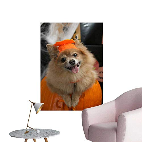 SeptSonne Wall Decals Halloween Costume Puppy Environmental Protection Vinyl,20
