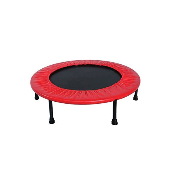 eHomeKart Trampoline for Kids – Perfect for Exercise and Jumping – Can Support Upto 60 Kg – for Home/Indoor and Outdoor – Suitable Age : 2 Years Onwards – Assembly Required
