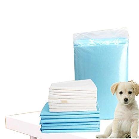shanzhizui Pañales Fuertes absorbentes para Gatos y Perros Almohadilla de orina para Perros Desodorización y Esterilización de Pañales para Mascotas Cuatro ...