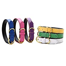 Petween Basic Classic Padded Leather Pet Collars for Cats Puppy Small Medium Dogs