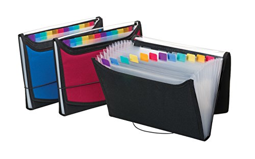 Pendaflex Expanding File, Letter, 13 Pockets, Color May Vary ()